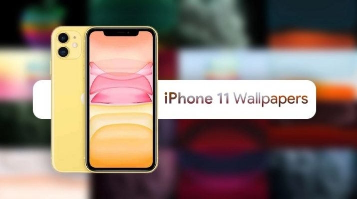 Pakua Hapa Wallpaper za Simu Mpya ya iPhone 11 (Download)